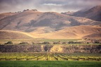 TRAVEL: Riverbench Winery CA – Top Wines