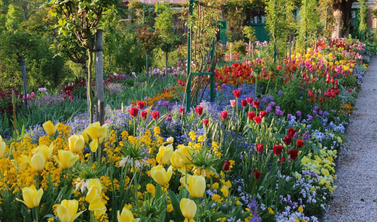The Artist's Garden - Monet